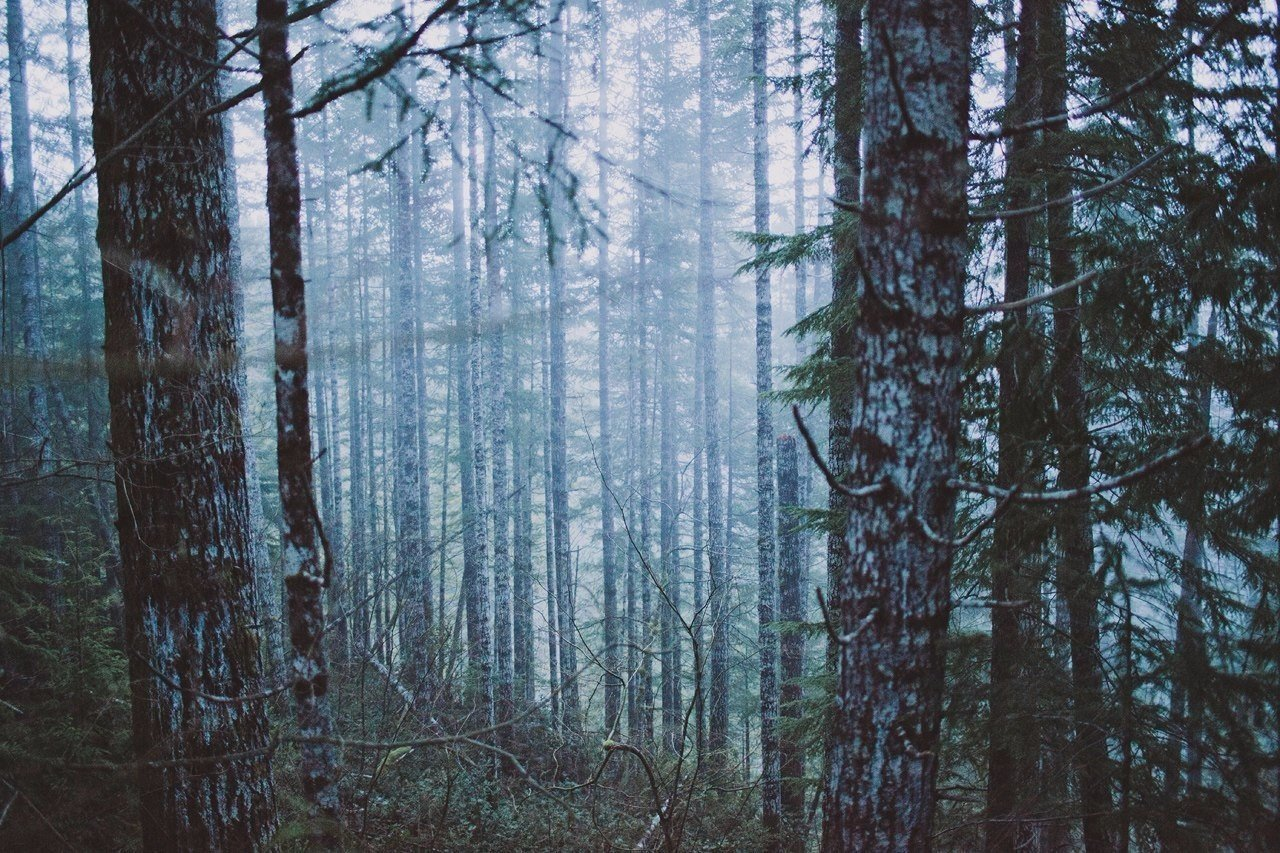 Роскошные пейзажи Норвегии - Страница 23 BP-MMayRC3A