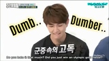 SHINee 'Dumb &amp Dumber' (Dissing, Bullying, etc..)