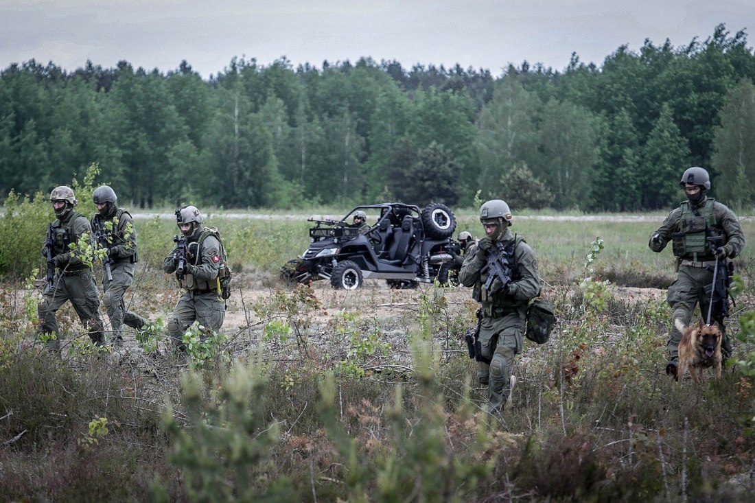 Armée lituanienne/Lithuanian Armed Forces - Page 3 GEY2kCKIxRI