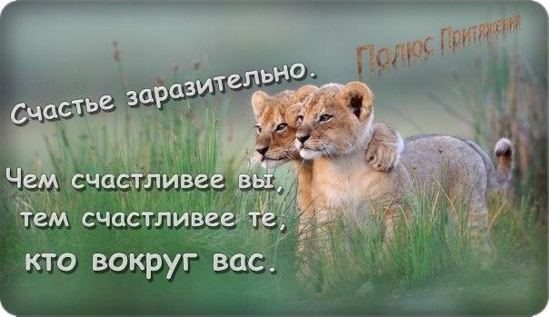 http://cs421830.vk.me/v421830810/5e0f/-gIutl26Uwo.jpg