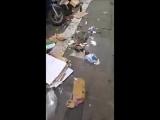 Rom - Hauptbahnhof Termini - Asylanten liegen auf dem Bürgersteig, tote Ratten und viel Dreck