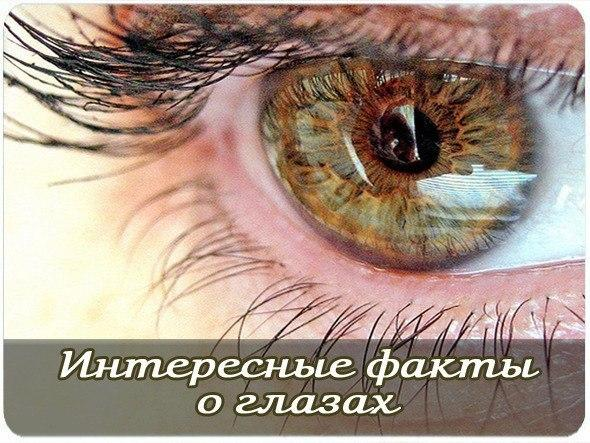 https://pp.userapi.com/c543105/v543105150/1bae2/TebmC1wz_3w.jpg