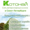 Сеть ветеринарных клиник Конотай