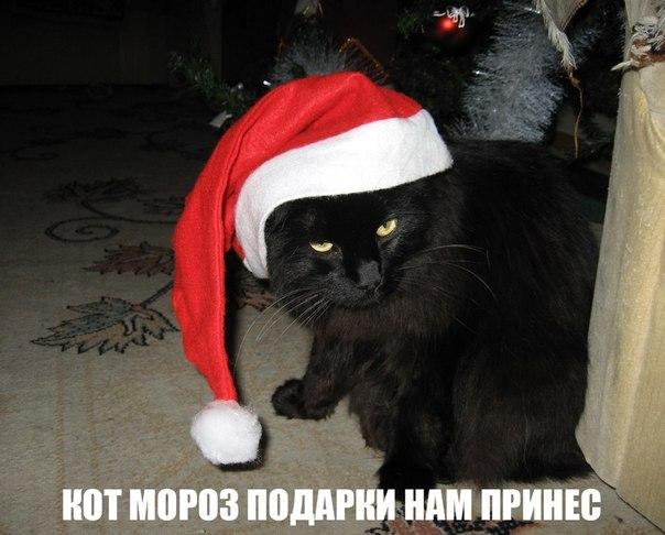 http://cs311127.vk.me/v311127313/9926/r6ahQNmU3lw.jpg
