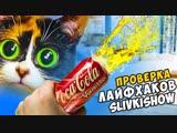 [Дима Масленников] 3 ЛАЙФХАКА от SLIVKI SHOW - КОЛА + ПУШКА проверка лайфхаков