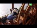 Кот Ахилл инспектирует петербургскую дамбу