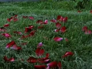 клип от Кларка Кента, береги свою любовь, и цени...