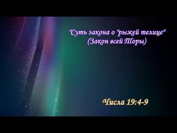 «ХУКАТ» ~5771~ ч.1 «Бедный я человек! кто избавит меня от сего тела смерти?» А.Огиенко (01.07.2011)