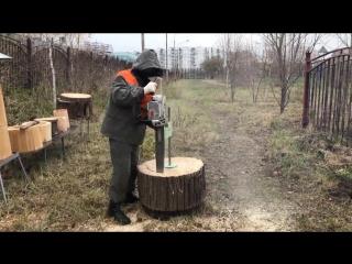 Колода для пчел - Проект « Дача »