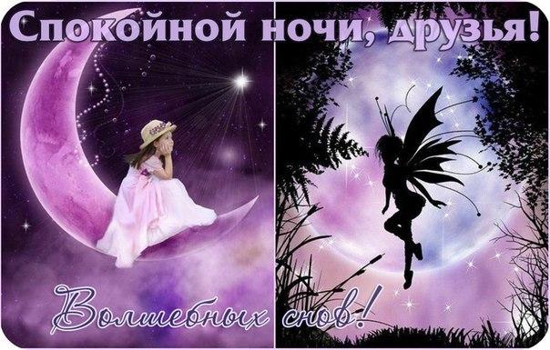 http://cs621329.vk.me/v621329350/4e65/_lgFQPRKWmc.jpg