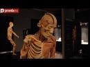 Выставка Тайны человеческого тела в Москве