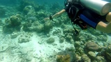 Maldives scuba diving GOPRO Hero 5 Session Superman Style