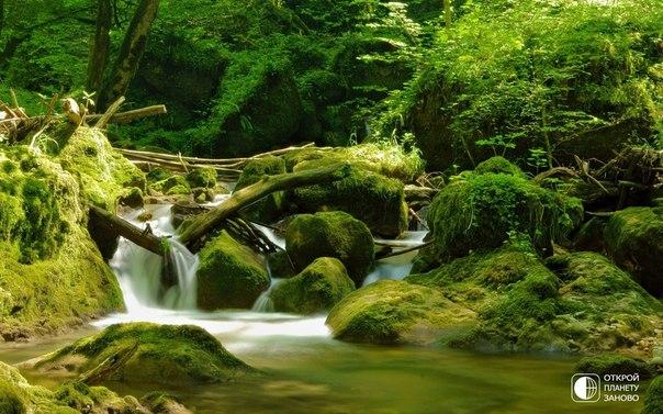 Изумрудная природа Швейцарии