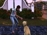 The Sims 3 - Pets Симс 3 - Питомцы Пёс из приюта