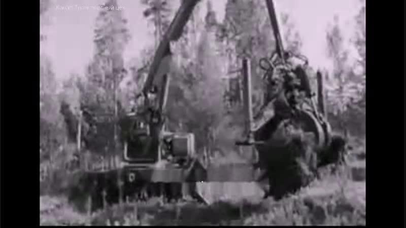 Когда уходят лесорубы 1971