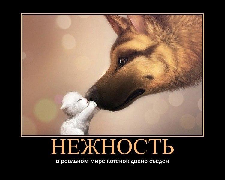 Поздравления с праздником весны холи картинки для Сергея-то эти