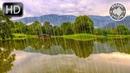 Шум Дождя на Озере без Грома, без Музыки для Снятия Стресса, Расслабления и Сна