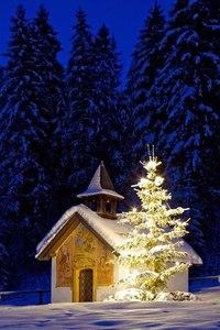 Зима... Морозная и снежная, для кого-то долгожданная, а кем-то не очень любимая, но бесспорно – прекрасная.  YsjjkYwold0