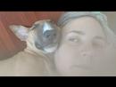 Video-1a028edcce95466be5e91d39f91ab46c-V.mp4