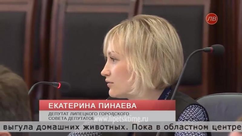 Депутат горсовета не согласилась с новыми изменениями правил содержания домашних животных
