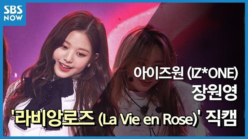 SBS [인기가요] - 아이즈원 '장원영' 라비앙로즈(La Vie en Rose) 직캠 / SBS 'INKIGAYO' IZ*ONE 'Jang Wonyoung' FanCam