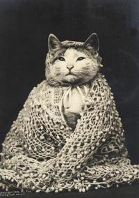 Ирина Богорад, 3 января 1962, Ростов-на-Дону, id195844672