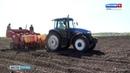 Семейные фермы поддержат грантами