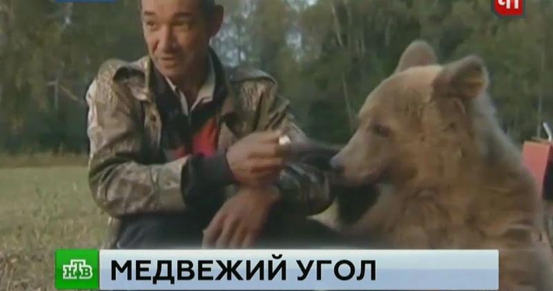 Прижившийся в башкирской семье медвежонок-сирота нашел новый дом