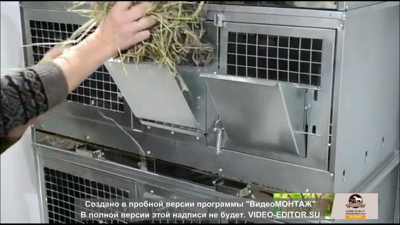 Клетка для откорма кроликов