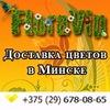 FloraVIP: доставка цветов и роз в Минске