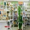Библиотека поселения Московский