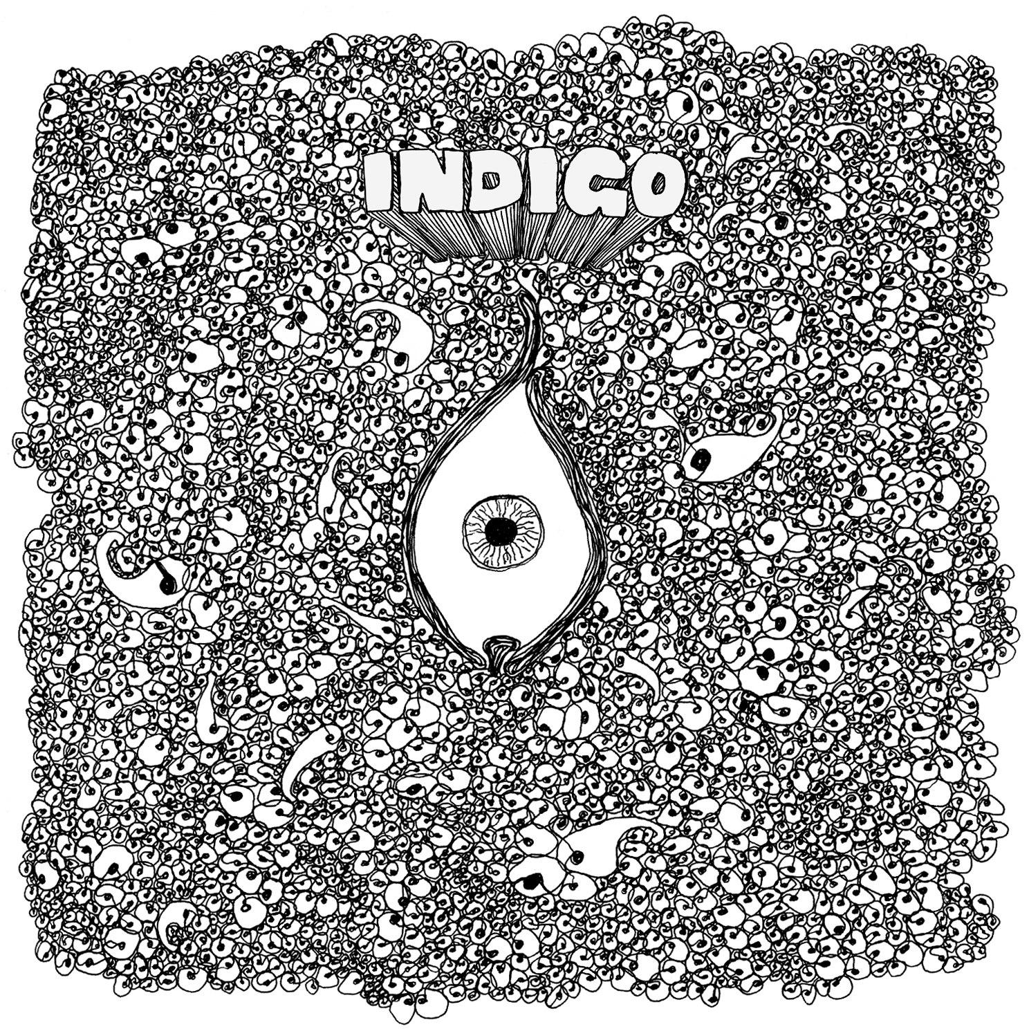 SampleMinded - Indigo  (2012)