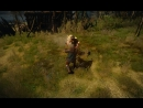 Весемир против бандитов