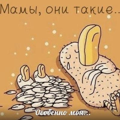 Анастасия Вебер, 23 декабря , Санкт-Петербург, id168665368