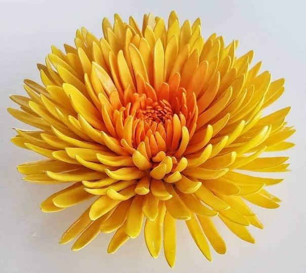 Фарфоровые цветы Американский художник-самоучка Оуэн Манн умеет вдохнуть жизнь в глину. Он создает керамические цветы из десятков, а иногда и более сотни лепестков. При этом каждый лепесток