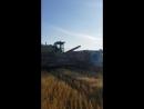 Уборочная 2018. Выгрузка пшеницы из комбайна.