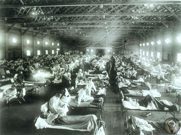НЕВИДИМЫЕ УБИЙЦЫ: 5 ЭПИДЕМИЙ, ПОМЕНЯВШИХ ХОД ИСТОРИИ Впервые люди смогли увидеть вирусы в 1930-е годы, когда появились электронные микроскопы, а до этого человечеству приходилось сражаться с