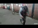 Собака конкурист! 🤟🐶🏇