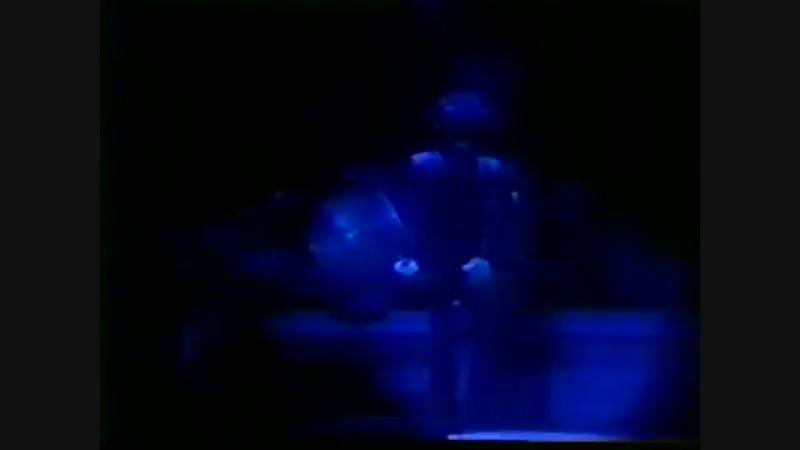 Prince 1999 Tour Live 1982