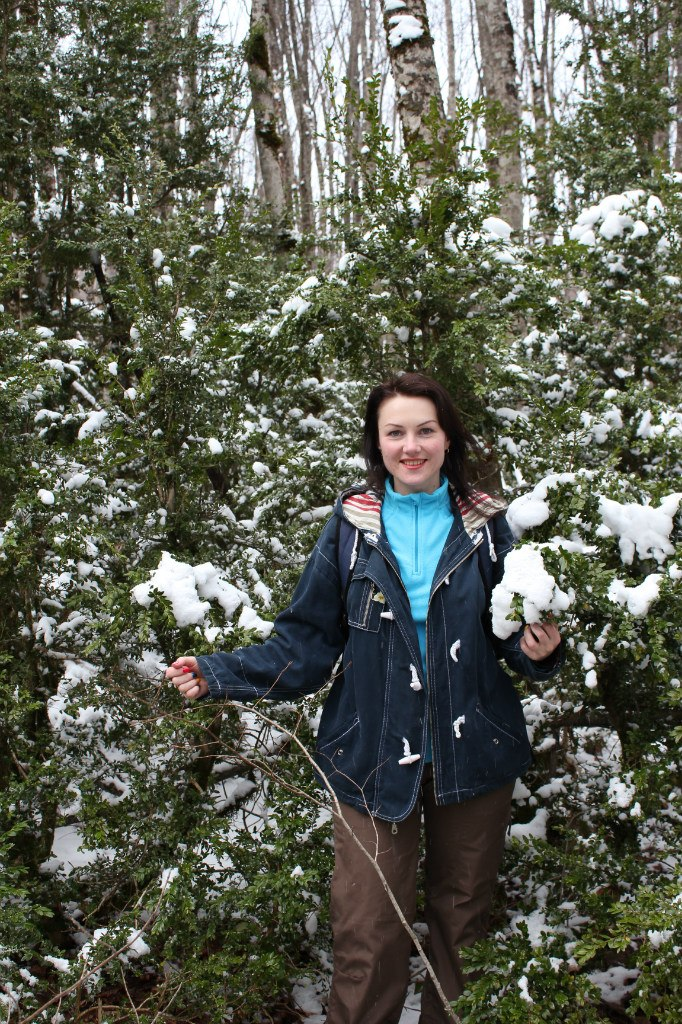 Гуамское ущелье в марте, самшит, снег