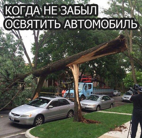 https://pp.vk.me/c635105/v635105345/774e/a51TnHZO16Q.jpg