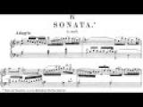 Johann Sebastian Bach - Sonata after Reincken ''Hortus Musicus'' BWV 965