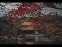 CANON 5D MARK IV Hyperlapses with Dji Ronin S Kyoto Japan Autumn 2018