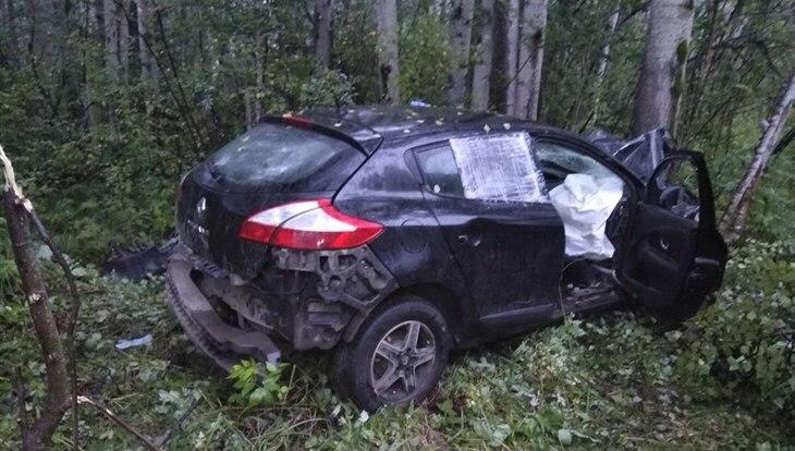 Томичка без прав врезалась в дерево на, возможно, угнанном автомобиле