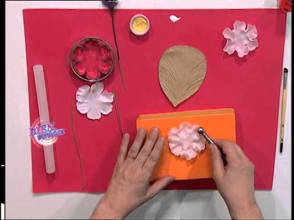 Jorge Rubicce - Bienvenidas TV - Realiza una Rosa Silvestre Doble en Porcelana Fría.