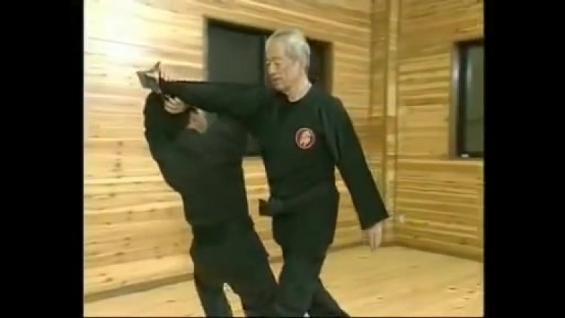 Ninjutsu Grand Master Masaaki Hatsumi in Action Pt 7
