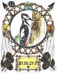 Индейский гороскоп - Зеленый Дятел с 21 июня по 21 июля