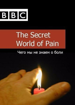 BBC: Чего мы не знаем о боли (2011)