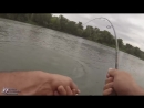 СОМ АТАКУЕТ СУДАКА Вот это рыбалка Я был в шоке