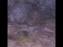 Ущелье Белогорка.